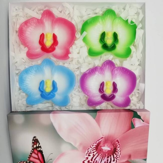 Весёлые орхидеи